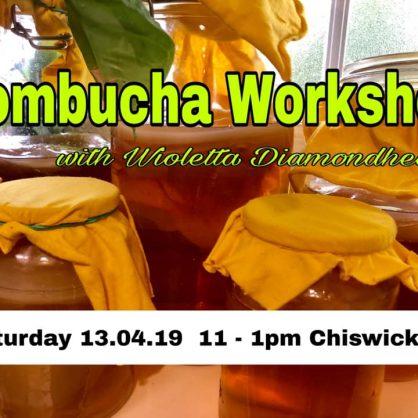 How to make your own Kombucha
